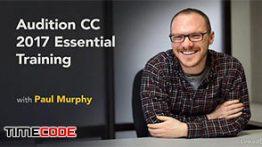 دانلود آموزش نرم افزار حرفه ای ویرایش صدا Audition CC 2017 Essential Training