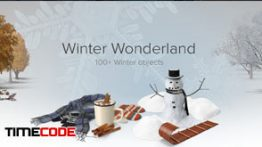 دانلود مجموعه عکس بدون پس زمینه : زمستان PixelSquid Winter Collection