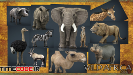 دانلود مجموعه مدل سه بعدی حیوانات