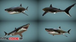دانلود مدل آماده سه بعدی : حیوانات دریایی  Low Poly Fish Collection Animated Pack 2