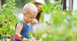 دانلود عکس استوک : کودک در حال آب دادن به گیاهان Cute Toddler Helphing Mom In The Garden