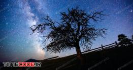 دانلود عکس استوک : ضد نور درخت در آسمان شب Deep Sky Astrophoto