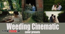 دانلود 35 پریست رنگ پریمیر مخصوص کلیپ عروسی Cinematic Wedding Presets