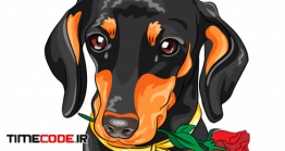 دانلود وکتور سگ با گل Vector Dog Dachshund With Red Flower