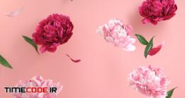 دانلود عکس با پس زمینه گل مخصوص موکاپ Mockup Empty White Podium With Floral Peonies Flower Pink
