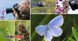 آموزش عکاسی ماکرو در طبیعت Macro photography out & about